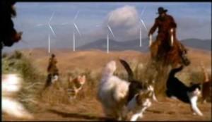 wind-cat-herding