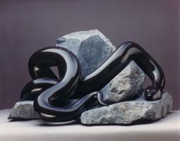 Black-Snake-31t